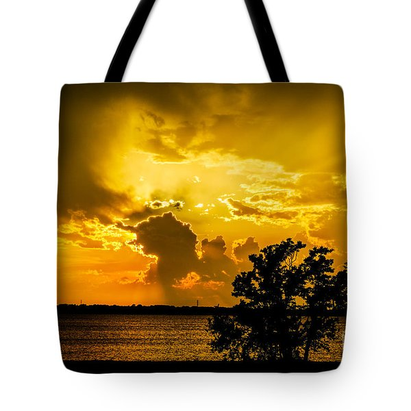 Tote Bag featuring the photograph After The Storm by Betty LaRue