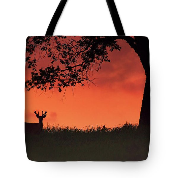 After The Sunset Tote Bag