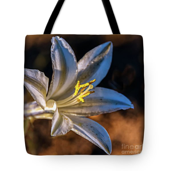 Tote Bag featuring the photograph Ajo Lily by Robert Bales