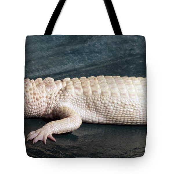 Albino Alligator Tote Bag