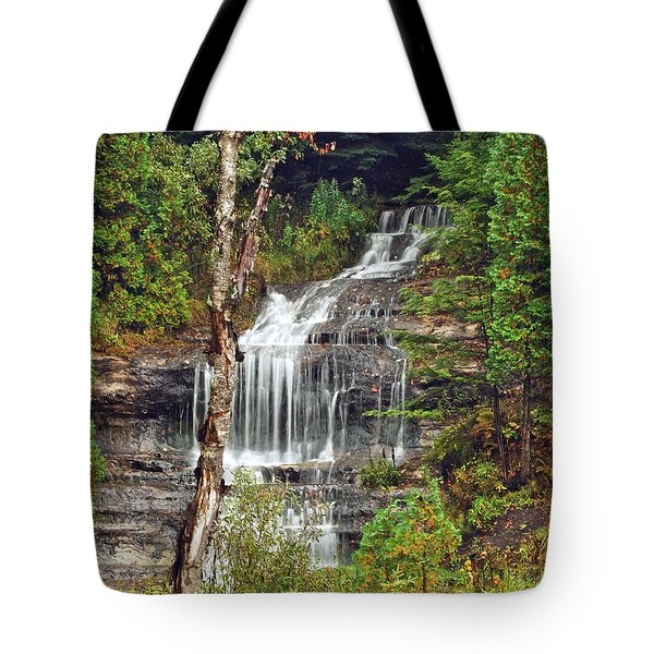Alger Falls Tote Bag by Michael Peychich