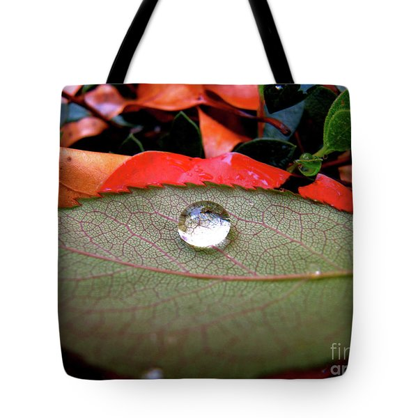 Tote Bag featuring the photograph All Aboard by CML Brown