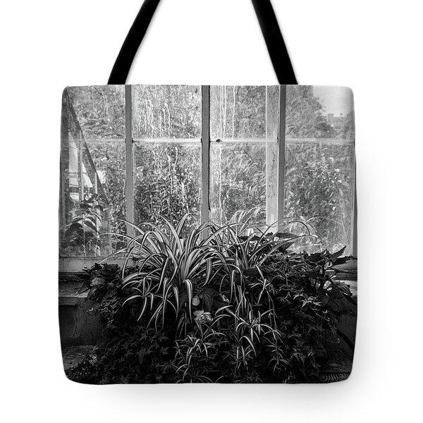 Allan Gardens Tote Bag