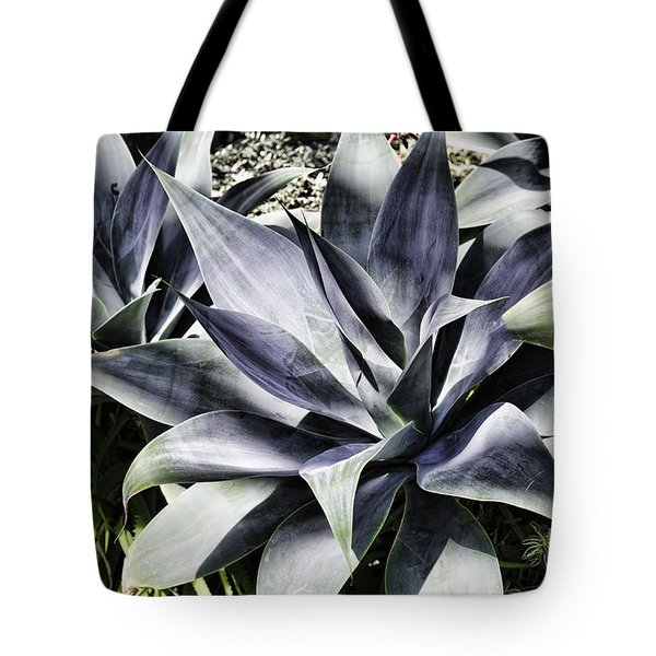 Tote Bag featuring the photograph Aloe by Judy Wolinsky