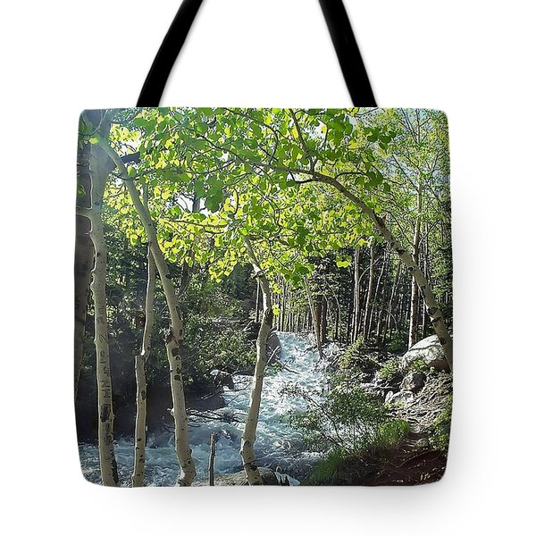 Along Alberta Falls Trail Rocky Mountain National Park Tote Bag