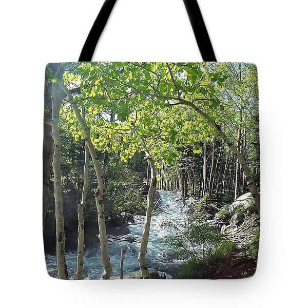 Along Alberta Falls Trail Rocky Mountain National Park Tote Bag