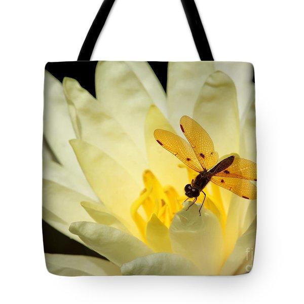 Amber Dragonfly Dancer 2 Tote Bag