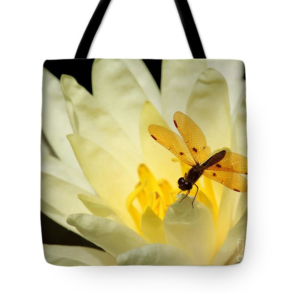 Amber Dragonfly Dancer 2 Tote Bag