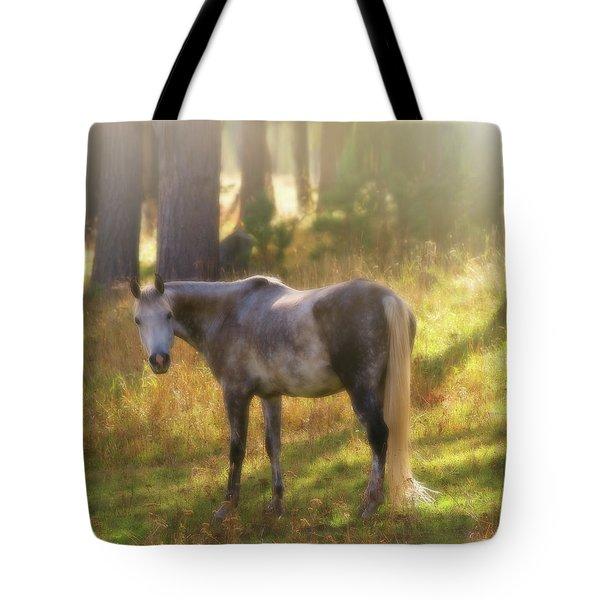 Ambient Grace Tote Bag