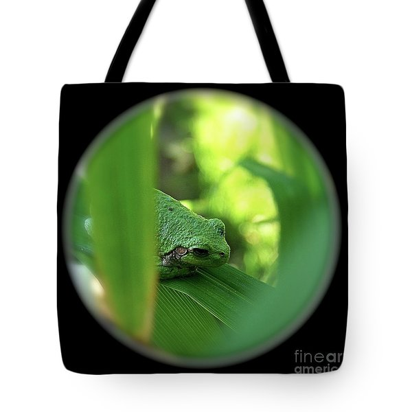 Ambiguous Tote Bag by Sue Stefanowicz