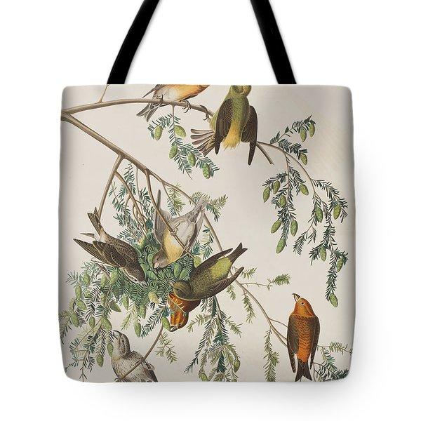 American Crossbill Tote Bag by John James Audubon