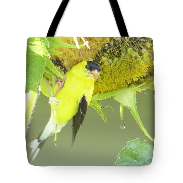 American Goldfinch On Sunflower Tote Bag