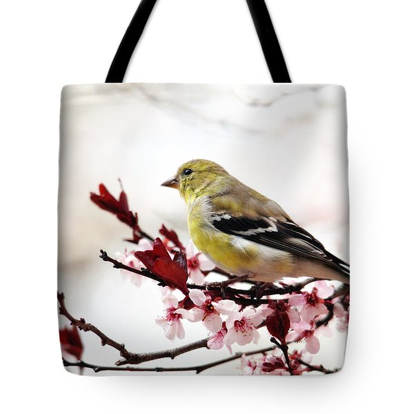 American Goldfinch In Spring Tote Bag