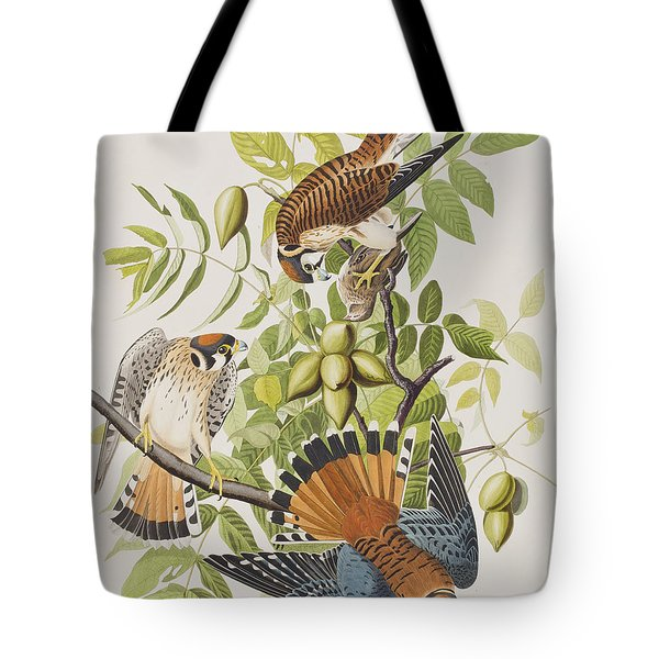 American Sparrow Hawk Tote Bag by John James Audubon
