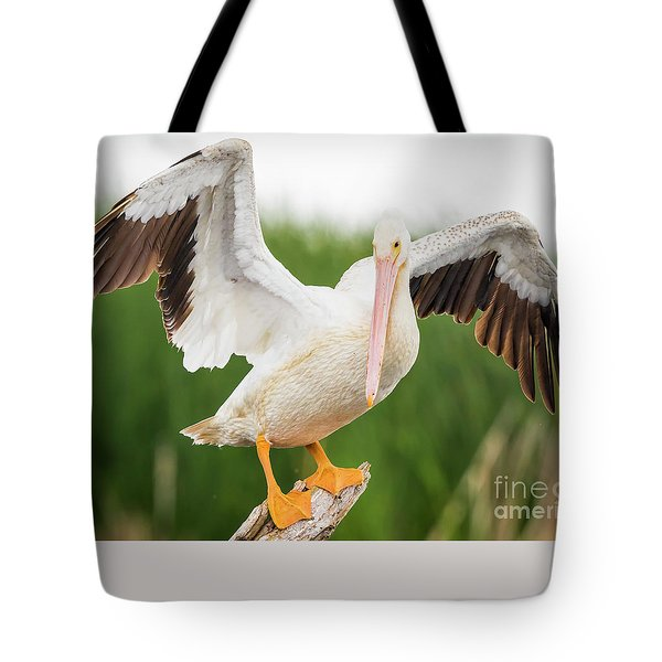 Tote Bag featuring the photograph American White Pelican  by Ricky L Jones