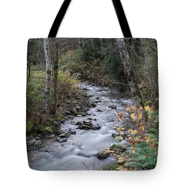 Tote Bag featuring the photograph An Autumn Stream by Jeff Swan