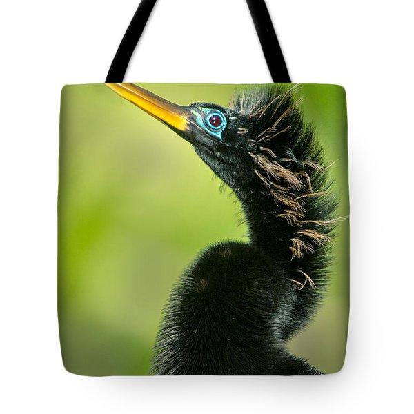 Anhinga Anhinga Anhinga, Tortuguero Tote Bag