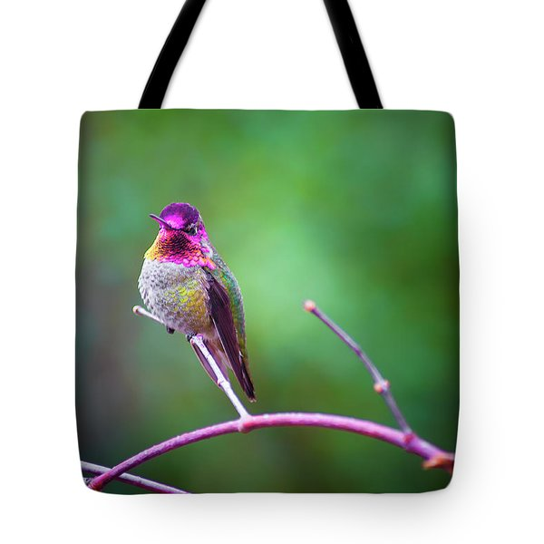 Anna Hummingbird Vii Tote Bag