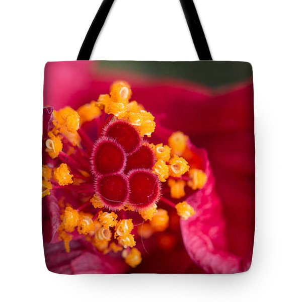 Tote Bag featuring the photograph Another Opening Another Show by Cathy Donohoue