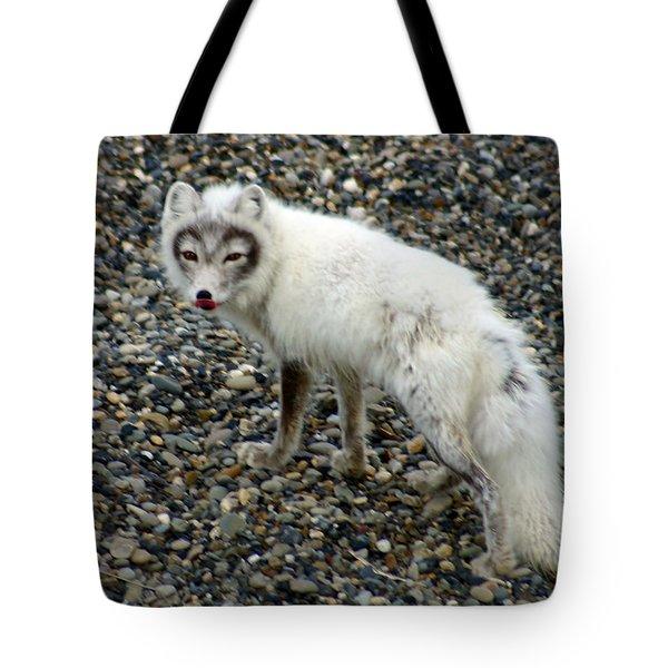 Arctic Fox Tote Bag by Anthony Jones