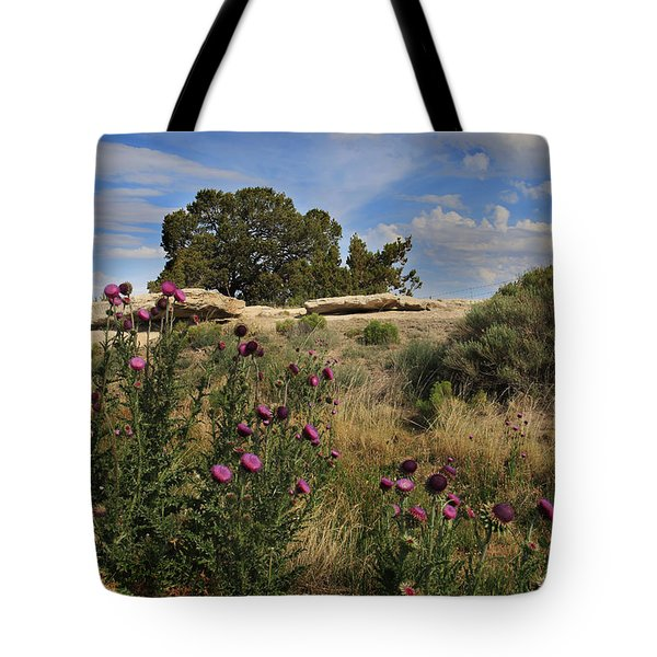 Tote Bag featuring the photograph Arizona Desert by Joseph G Holland
