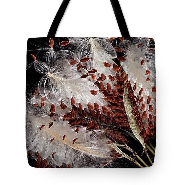 Asclepias Currasavica--seed Pod Tote Bag