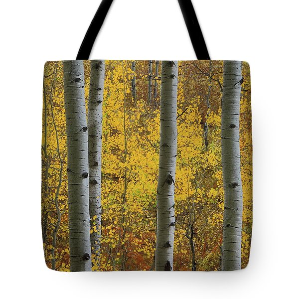 Tote Bag featuring the photograph Aspen In Autumn At Mcclure Pass by Jetson Nguyen