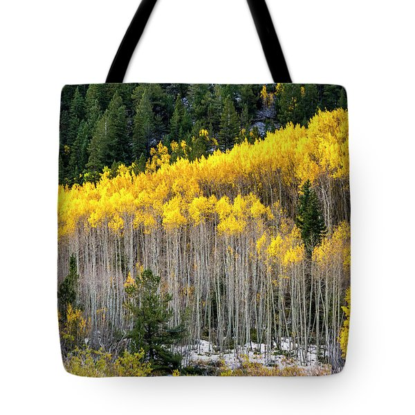 Aspen Trees In Fall Color Tote Bag