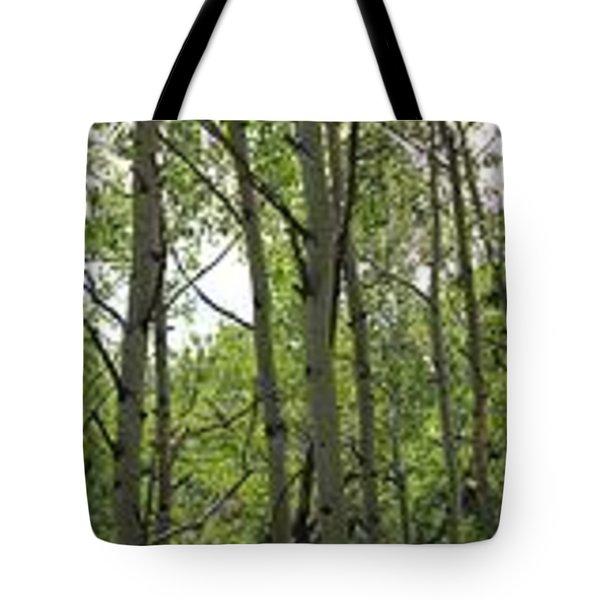Aspen Vertirama Tote Bag