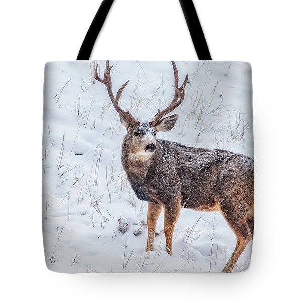 Atypical Buck Tote Bag