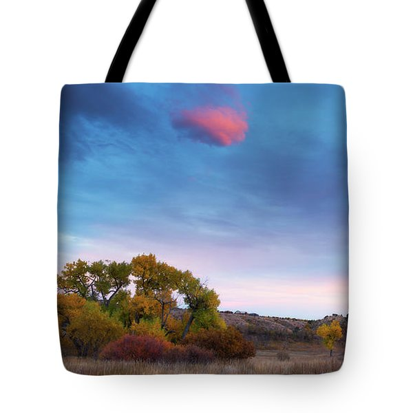 Tote Bag featuring the photograph Autumn Days by Tim Reaves