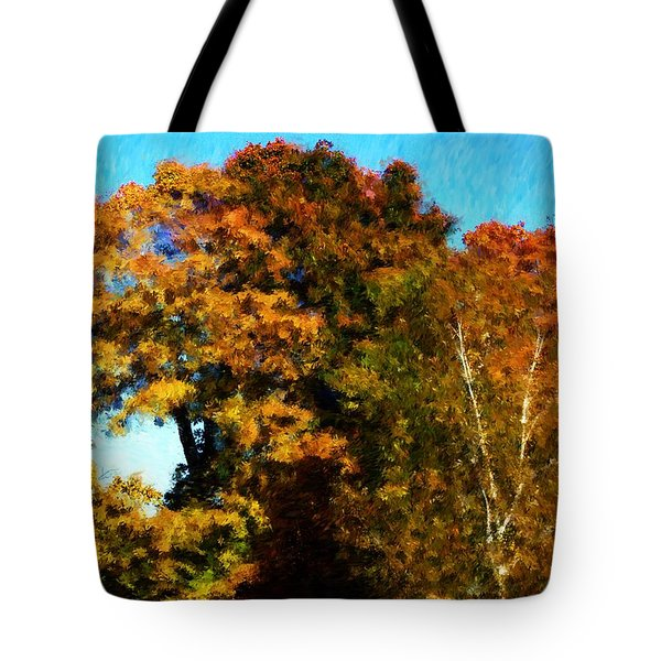 Autumn Leaves Tote Bag by David Lane