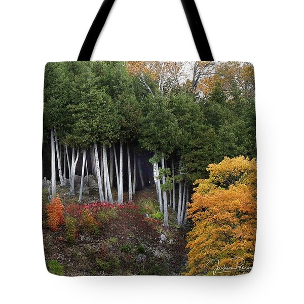 Tote Bag featuring the photograph Autumn On Mackinac Island  by Jackson Pearson