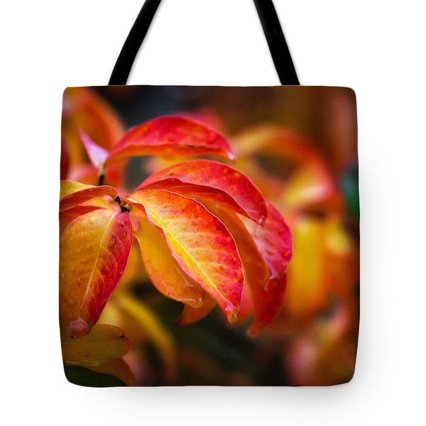 Autumn Rain Tote Bag