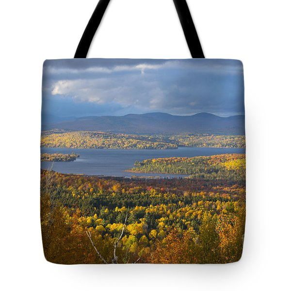 Autumn Splendor Tote Bag by Alana Ranney