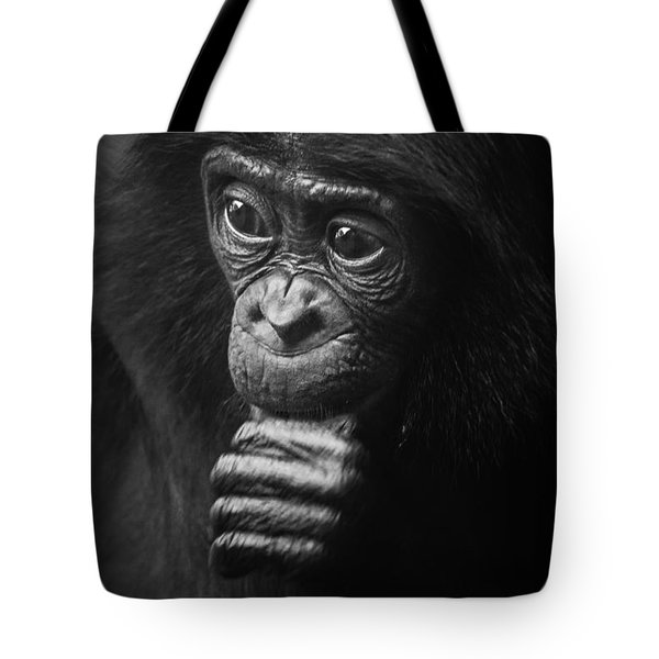 Tote Bag featuring the photograph Baby Bonobo Portrait by Helga Koehrer-Wagner
