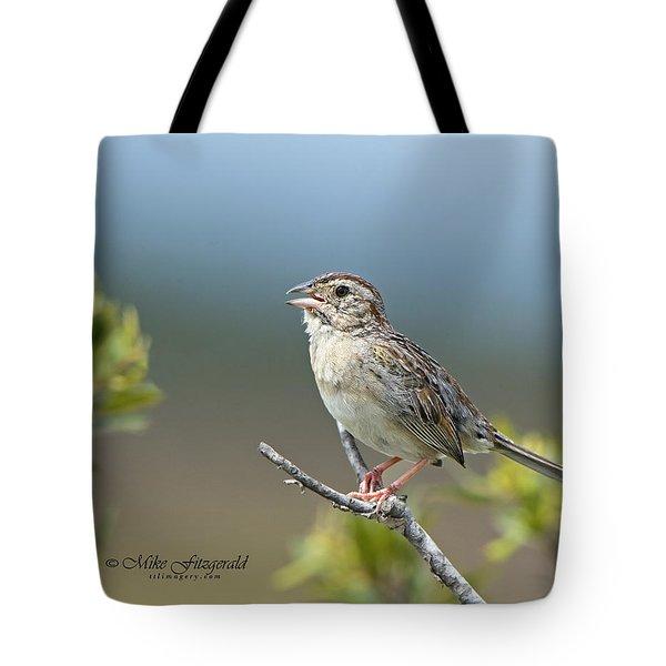 Bachman Sparrow Tote Bag