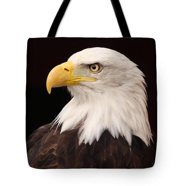 Bald Eagle Tote Bag by David Warrington
