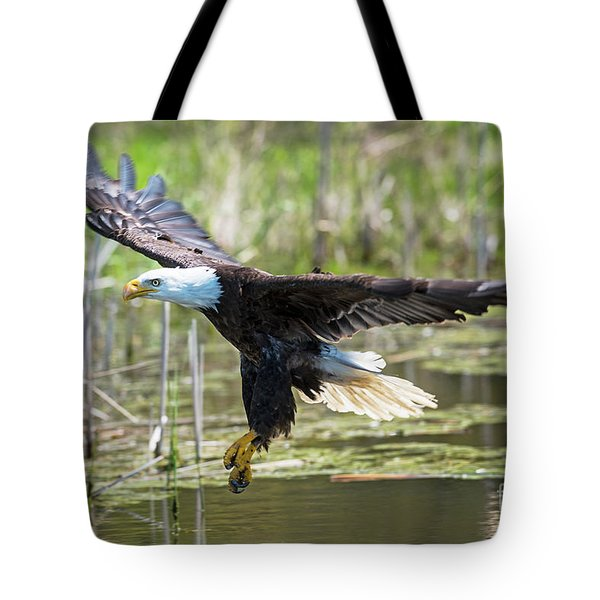Bald Eagle-3175 Tote Bag