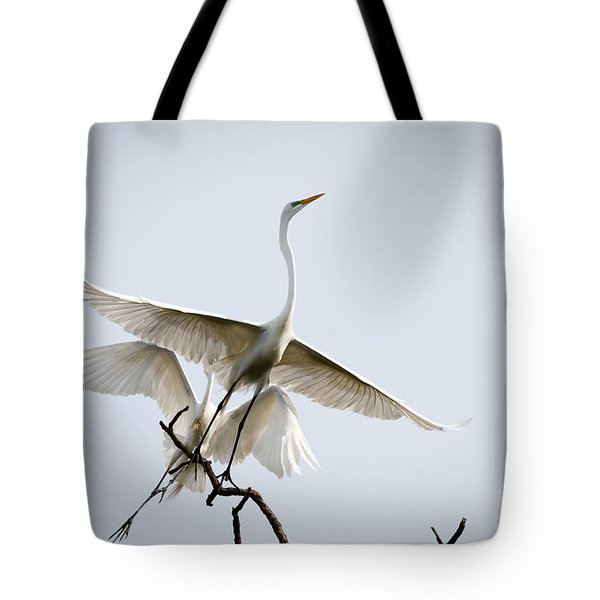 Ballet In The Sky Tote Bag