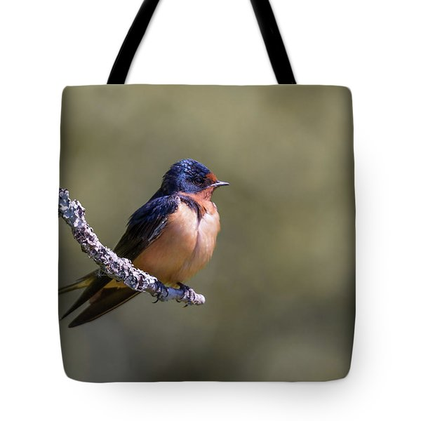 Tote Bag featuring the photograph Barn Swallow by Kathy King
