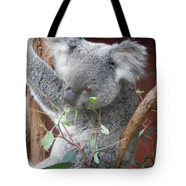 Beady Eyed Koala Tote Bag