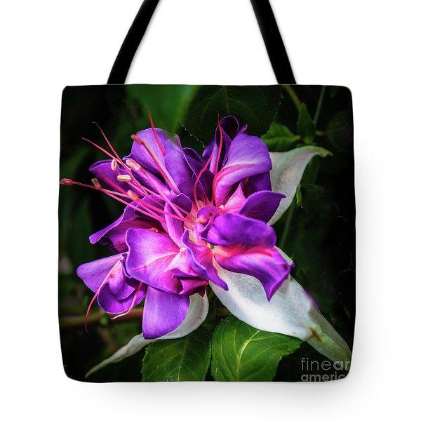 Beautiful Fuchsia Tote Bag by Robert Bales
