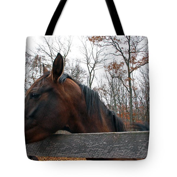 Beautiful Girl Tote Bag