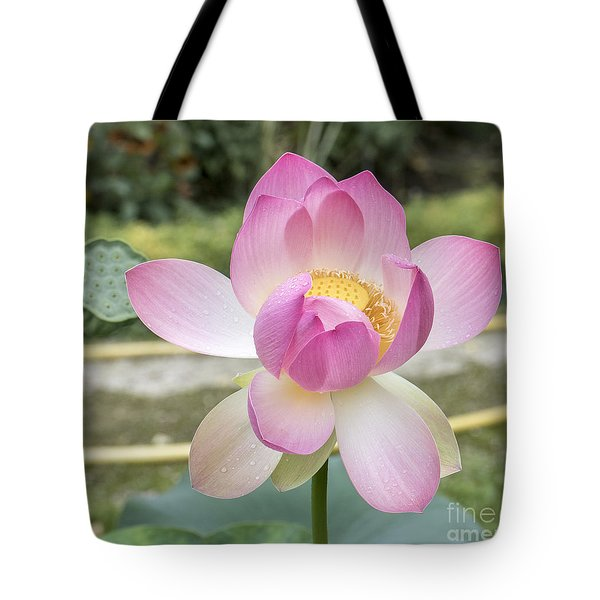Beautiful Indian Lotus Tote Bag