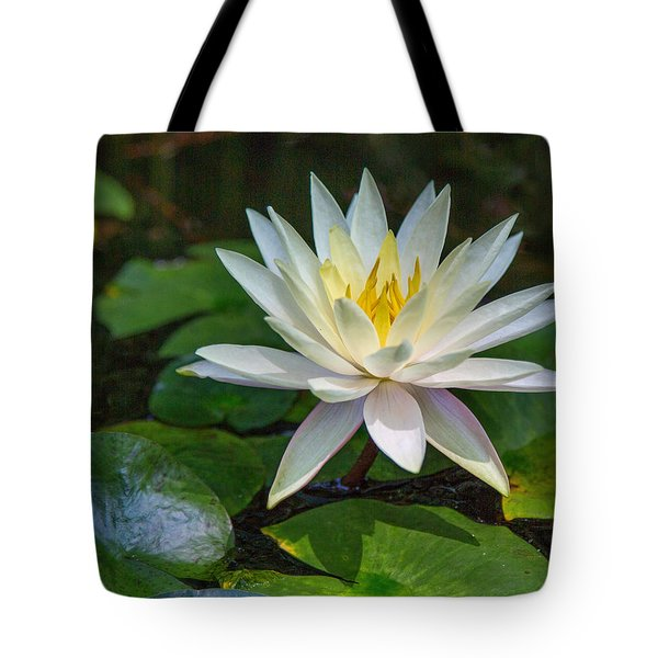 Beautiful Lotus Tote Bag by Susi Stroud