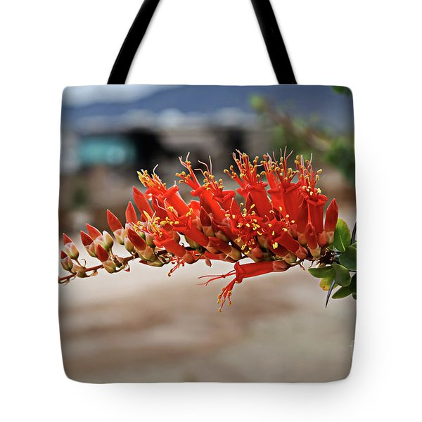 Tote Bag featuring the photograph Beautiful Ocotillo by Robert Bales