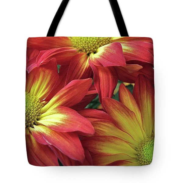 Tote Bag featuring the photograph Beautiful Trio by Allen Beatty