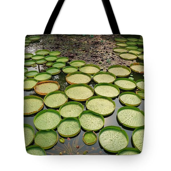 Beautiful Victoria Water Platters And Flowers Tote Bag by Yali Shi