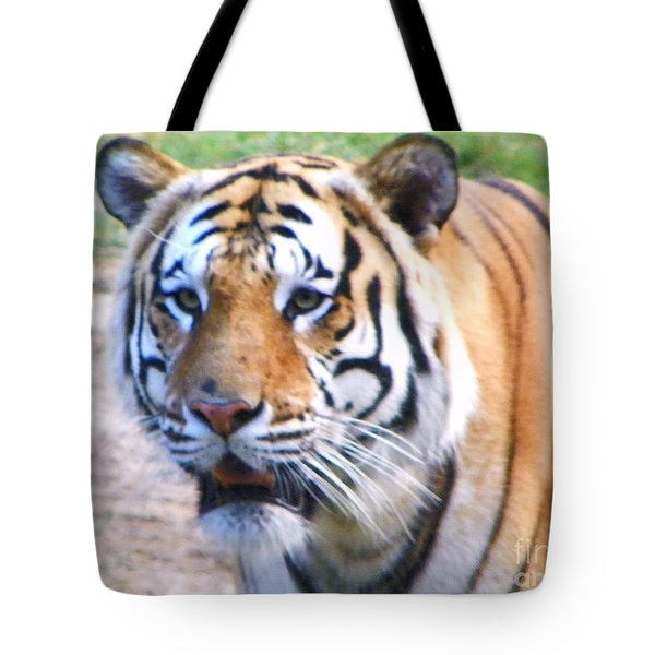 Tote Bag featuring the photograph Bengal Tiger by Shirley Moravec